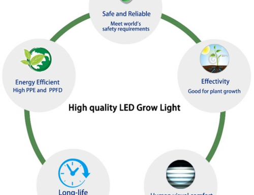 What is the best LED grow light?
