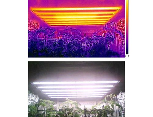 Selection of plant LED grow lights – reliability and heat dissipation