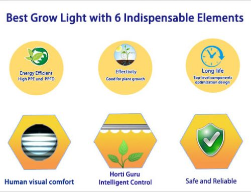 What is the best LED grow light? — 6 elements of LED grow lights