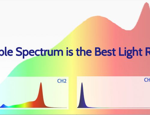 Tunable spectrum is the best light recipe